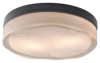 Close to Ceiling Lighting Fixture -- 700FMFLDRSC