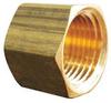 Brass Cap,1/2 In,FNPT -- 6AYZ5 - Image