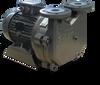 Compact, Single-Stage Liquid Ring Vacuum Pump -- Dolphin LX 0110, 0140, 0180 B