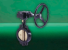 F612 GEM Butterfly Valve -- View Larger Image