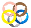 Color-Coded Plastic Shims -Image