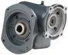 GSF Series Worm Gear Reducer -- 20GSF60 56C1.25