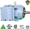 Explosion Proof Motors-C-Face, C-Face -- XHHI100-36-405TSC