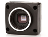 Point Grey 1.3 Megapixel USB2.0 CCD Color Camera -- NT83-512