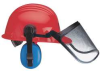 Forestry Kit,HardHat,FaceScreen,EarMuffs -- 15W993