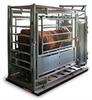 Livestock Scale -- RIC-SLV