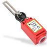 Lever Hinge Interlock Safety Switch: plastic body and head -- IDIS-192005