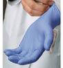 Blue Nitrile Gloves - Disposable - Powder Free - Large -- BNDG-L - Image