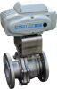 Electric Valve Actuator -- NL Series