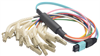 MPO Male to 12x Flex LC Fan-out, 12 Fiber Ribbon, OM4 100G 50/125 Multimode, LSZH Jacket, Aqua, 5.0m -- MPM12OM4-FLC-5 - Image
