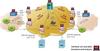SIGTRAN Protocol Analyzer -- PKV105