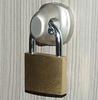 Rotor Hasp Lock -- S/O