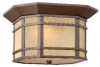 1273OZ Exterior -Ceiling Mount -- 685766