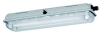 Light Fittings for Fluorescent Lamps -- Series EXLUX 6001 -Image