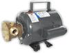 Jabsco Bronze AC Motor Pump Unit - 115v -- CWR-34540
