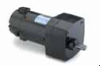 AC Integral Gearmotor -- 107000 - Image