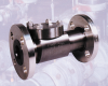 Swing Check Valve - Image