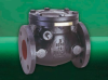 F493 Swing Check Valve -- View Larger Image