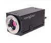 Zebra®2 (HD-SDI/GigE) Camera -- ZBR2-PGEHD-50S5C