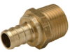 XL Brass Male Pipe Thread Adapter -- QQMC33GX -Image