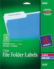 AVERY SELF-ADHESIVE FILING LABELS, 1/3 CUT, 2/3 X 3-7/16, CLEAR, 450/PACK -- 10132125