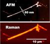 Raman/AFM/NSOM Microscope System