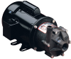 March TE-6T-MD and TE-6K-MD Magnetic Drive Pumps -- 94010 - Image