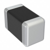Fixed Inductors -- 587-6254-1-ND -Image