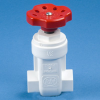 PVC Type II Gate Valves -- 19241