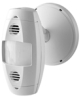 Wall Mount Occupancy Sensor -- OSW12-M0W