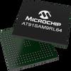 Integrated Graphics/LCD Controller -- AT91SAM9RL64 - Image