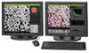 Desktop Scanning Electron Microscope Software -- ParticleMetric - Image