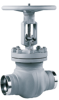 Flanged or Weld End Gate Valve -- STAAL 100 AKD/AKDS - Image
