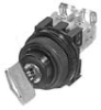 Selector Switch With Key -- AR30JAR