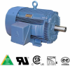 Hyundai Premium Efficiency Motors: Rigid Base, Hyundai Rigid Base: 575 volt -- HHI5-36-575-184T -Image