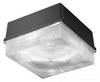 Outdoor Ceiling Light -- NRG-413S8