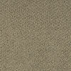 Textures 36 Broadloom 4655 Carpet -- Jute 8401