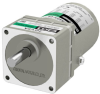 Induction Gear Motor -- 2IK6UA-100 - Image