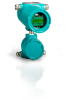 Ultrasonic Flow Meter for Explosion Hazard Areas -- FLUXUS® G800