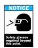 Brady ANSI Z535 Safety Signs: Safety Glasses Required Beyond This Point -- hc-19-038-230