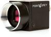 Flea®2 CCD Camera -- FL2-20S4M/C