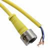 Circular Cable Assemblies -- WM16460-ND -Image