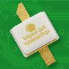 GaN RF Power Transistor -- T1G6001528-Q3