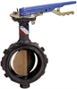 Butterfly Valve - Ductile Iron, Wafer Type, 100 PSI, Actuated -- WD-L000