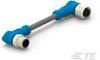 M8/M12 Cable Assemblies -- T4162224002-003 -Image