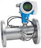 Flow - Ultrasonic Flowmeters -- Prosonic Flow B200