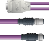 LAPP UNITRONIC® PROFIBUS® D-Sub Y-Cordset to Straight Module - 5 positions male M12 straight and 5 positions female M12 straight to 9 positions D-sub straight - Violet PVC - Stationary - 2m -- OLFPB4110163S02 -Image