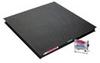 VX32XW10000L - Ohaus VX32XW10000L, Washdown Floor Scale, 10000 lb, 4 x 4' Platform; 115V -- GO-11600-20