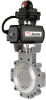 BX2000 Butterfly Valves for Control - Image