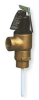 T And P Valve,1 In,2,155,000 Btu -- 2XLA4 - Image